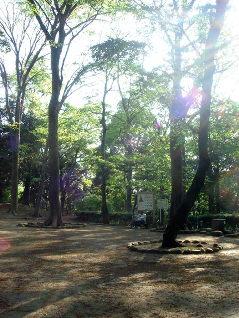 Alicepark